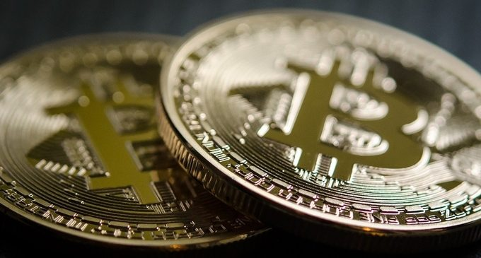 U.S. retail investors show their interest in Cardano (ADA) and Bitcoin (BTC) in a survey
