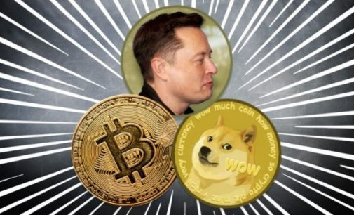 Musk Comes To Terms With Bitcoin, The Leading Token Rebounces
