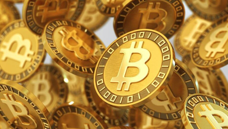 Who Owns The Most Bitcoins?